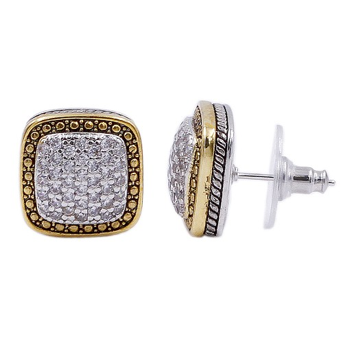 Two-tone Plated with Cubic Zirconia Earrings